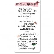 Magnetic Bookmark - Special Friend