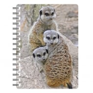 Meerkats family of 3 3D Notebook