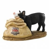 Mr Hoggs Piggy Wiggy Nuts - Pig Figurine