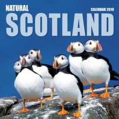 Natural Scotland Wall Calendar 2019