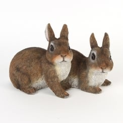 Pair Of Rabbits Figurine