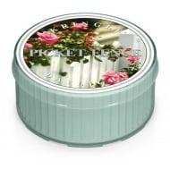 Picket Fence Daylight Candle