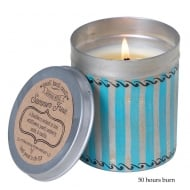 Picnic Tin with Summer Fruits Fragrance Candle