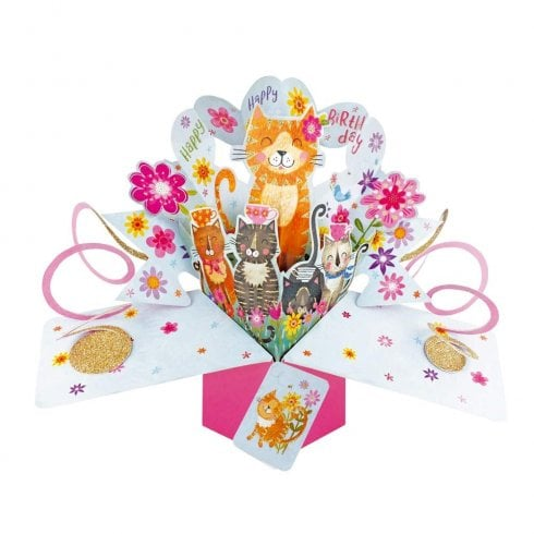 Second Nature Pop Up Cats 3D Birthday Card POP180