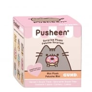 Pusheen Surprise Mystery Blind Box Series 1