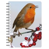 Robin 4 3D Notebook