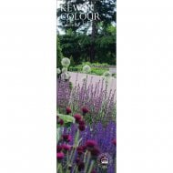 Royal Botanic Gardens Kew in Colour Slim Calendar 2019