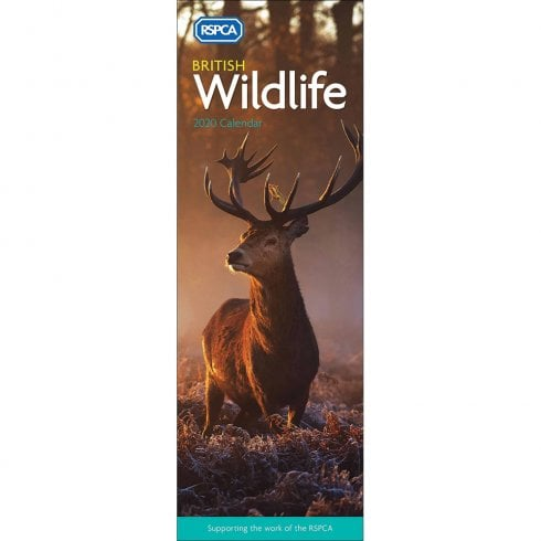 Otter House RSPCA British Wildlife Slim Calendar 2020