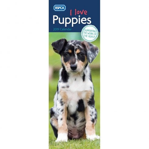 RSPCA I Love Puppies Slim Calendar 2019