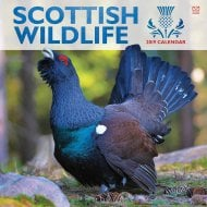 Scottish Wildlife Wall Calendar 2019