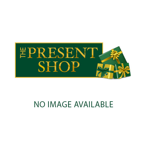 Silver Plated Money Box - Carousel