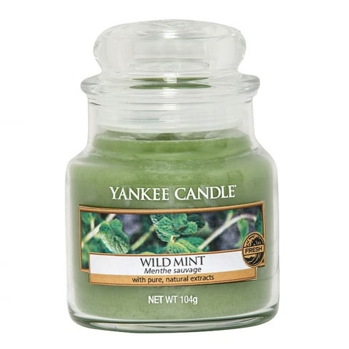 Yankee Candle Small Jar Candle Wild Mint