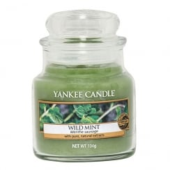 Small Jar Candle Wild Mint
