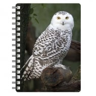 Snow Owl 3D Notepad