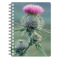 Spear Thistle 1 3D Notebook