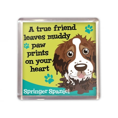 Wags & Whiskers Springer Spaniel Magnet