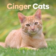 Square Wall Calendar 2021 - Ginger Cats