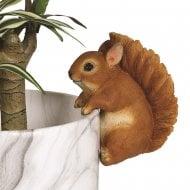 Squirrel 13cm Outdoor Weatherproof Plant Pot Hanger