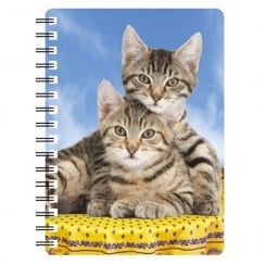 Tabby Kittens 3D Notebook