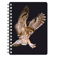 Tawny Owl Flying 3D Notebook