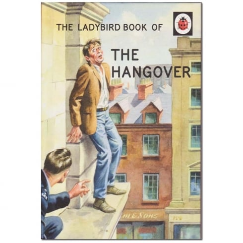 Boxer The Ladybird Book Of The Hangover
