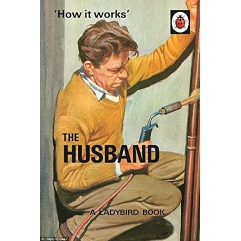 Boxer The Ladybird Book Of The Husband