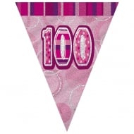 Unique Pink Glitz 100th Birthday Flag Banner 12 ft