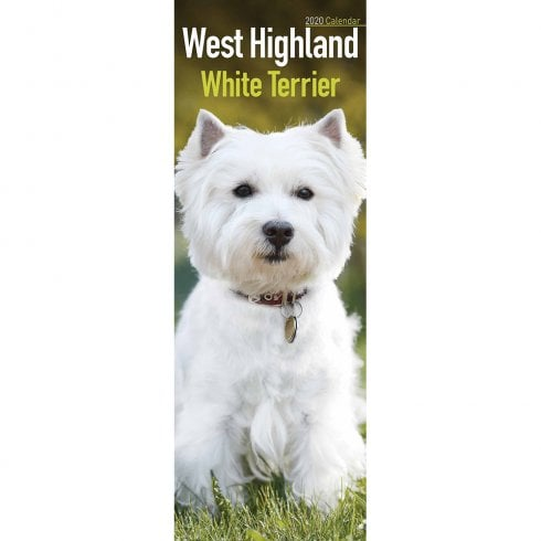 Otter House West Highland White Terrier Slim Calendar 2020