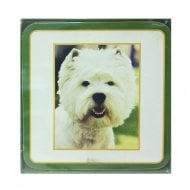 Westie Set Of Coasters
