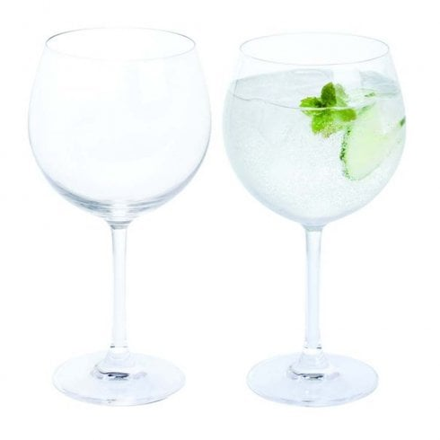 Dartington Crystal Wine and Bar Copa Gin & Tonic Pair