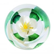 Woodland Walk Paperweight Wild Rose Of Scotland