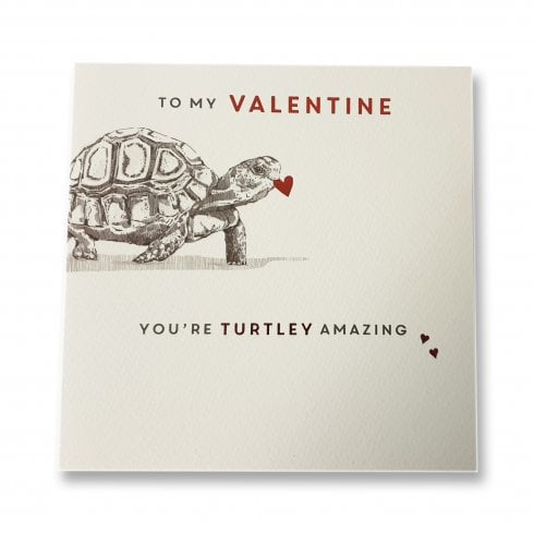 Ling Design Youre Turtley Amazing Valentines Day Turtle Card SVI113